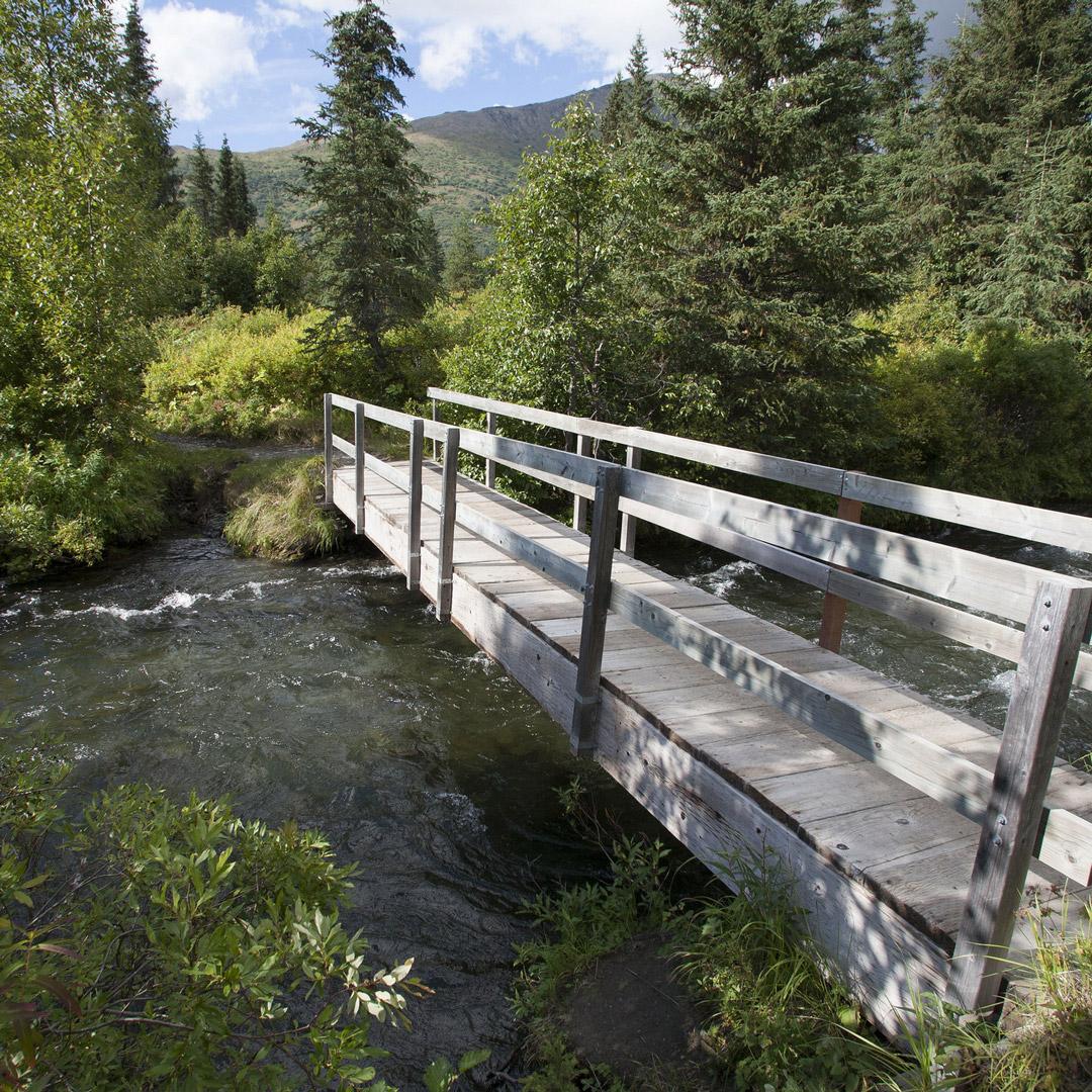 bridge over a creek in Alaska