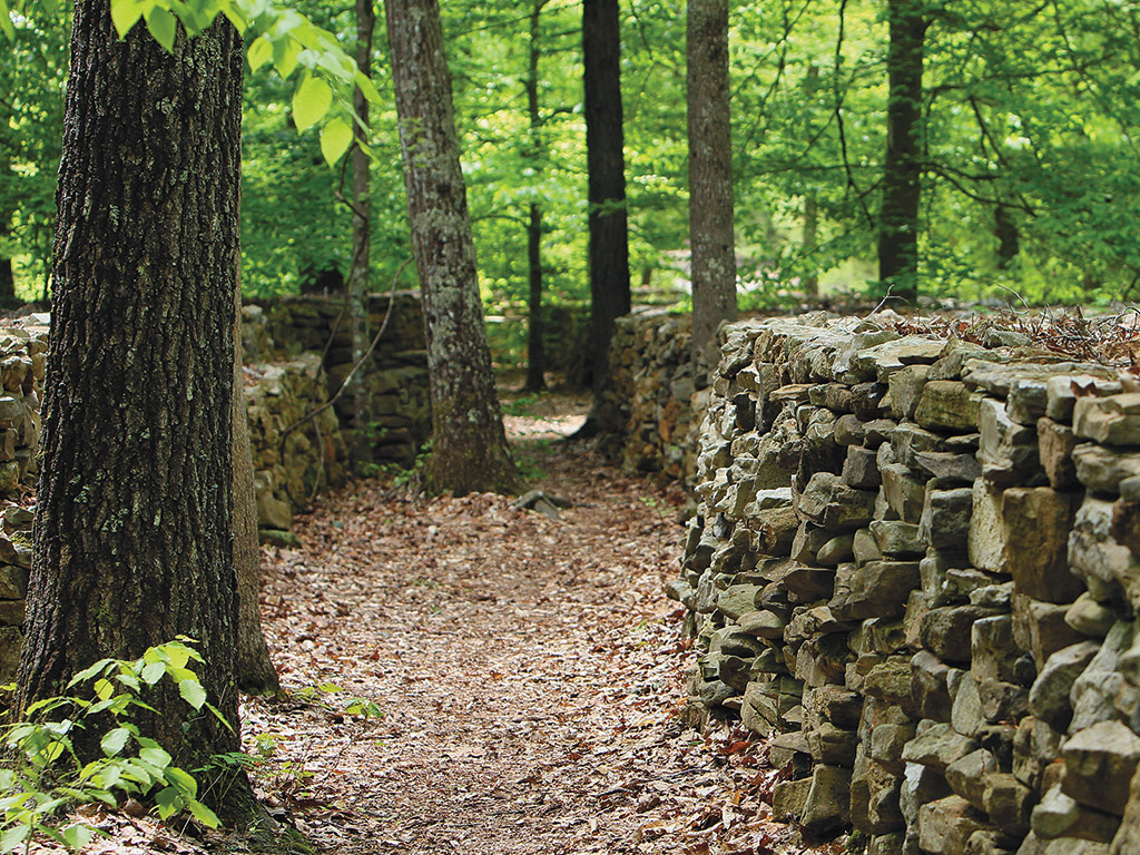 path through forest along a stone wall in Alabama