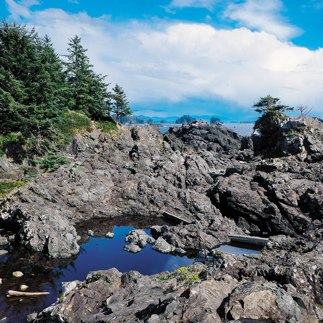 rocky coastline along the Wild Pacific Trail in BC
