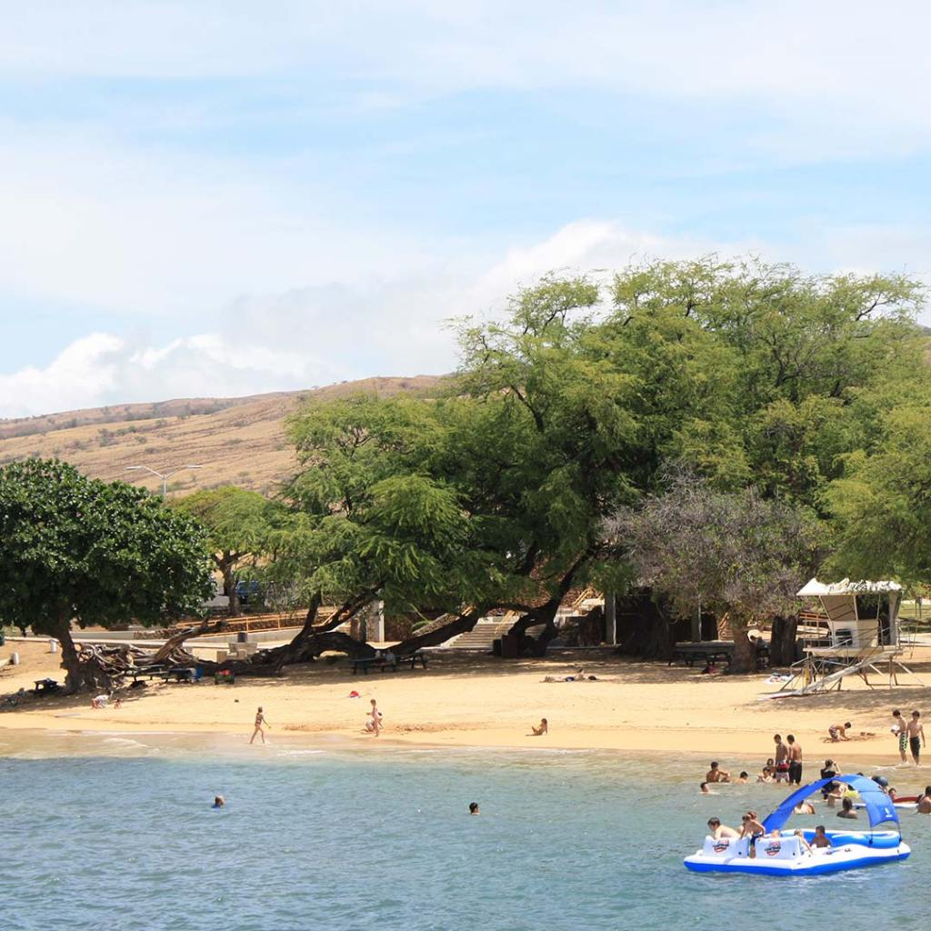 Big Island Beaches: Visiting Hawaii's Big Island With Kids