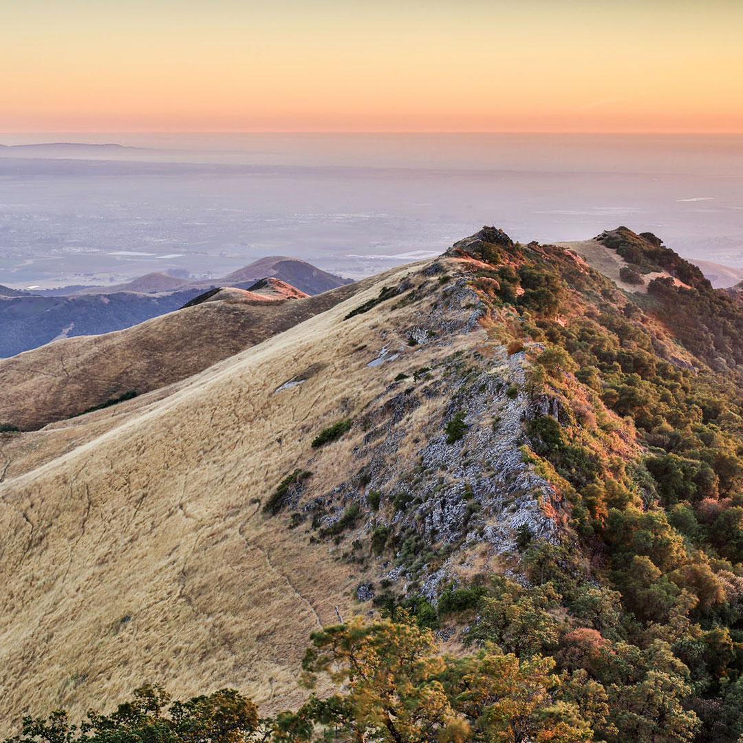 Fremont Peak State Park, San Juan Bautista.