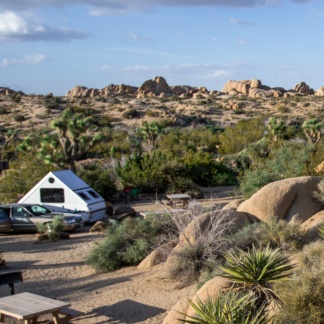 Joshua Tree National Park Campgrounds Moon Travel Guides
