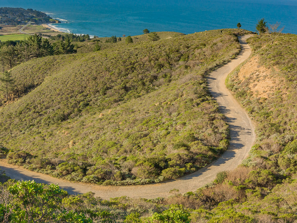 winding dirt trail up a hill on the coast of California