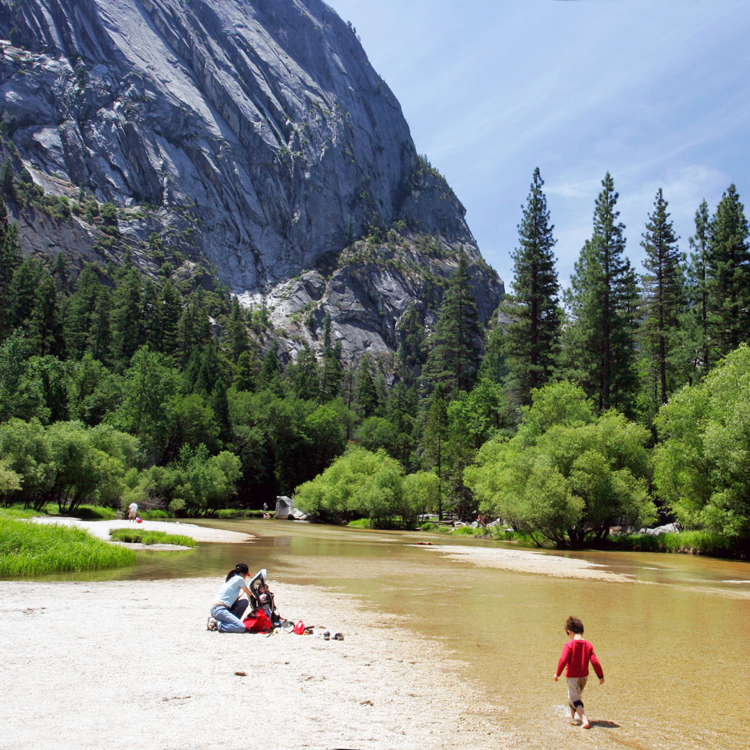 a family wading in the Merced River in Yosemite