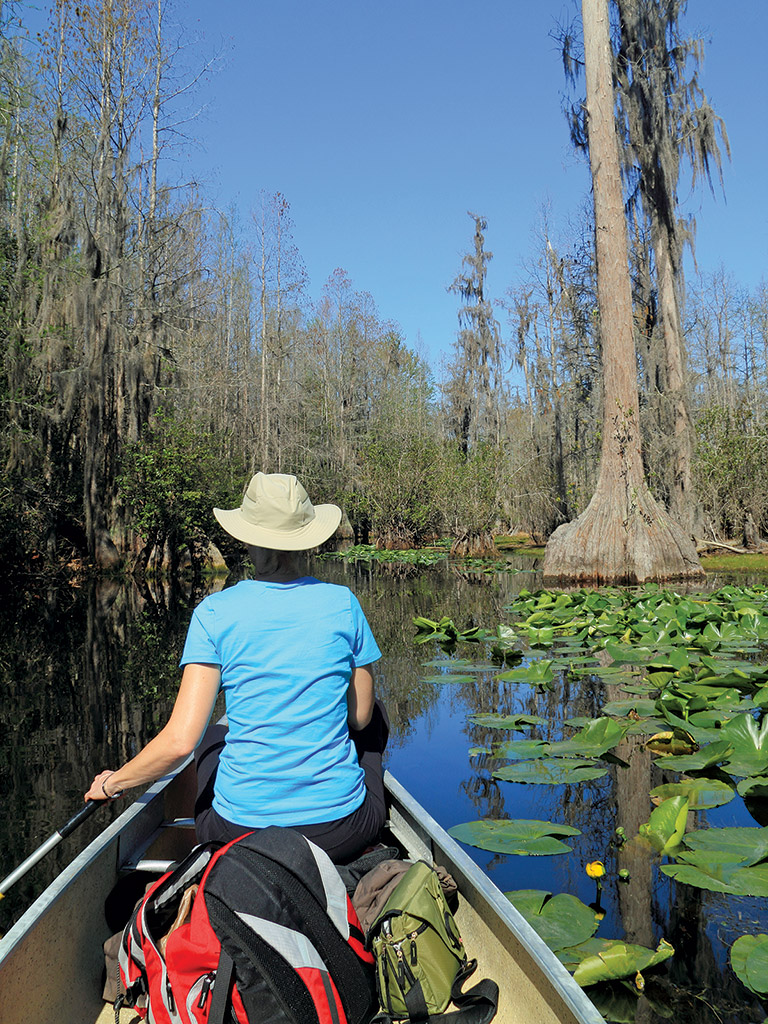 woman sitting in a canoe in Okefenokee Swamp