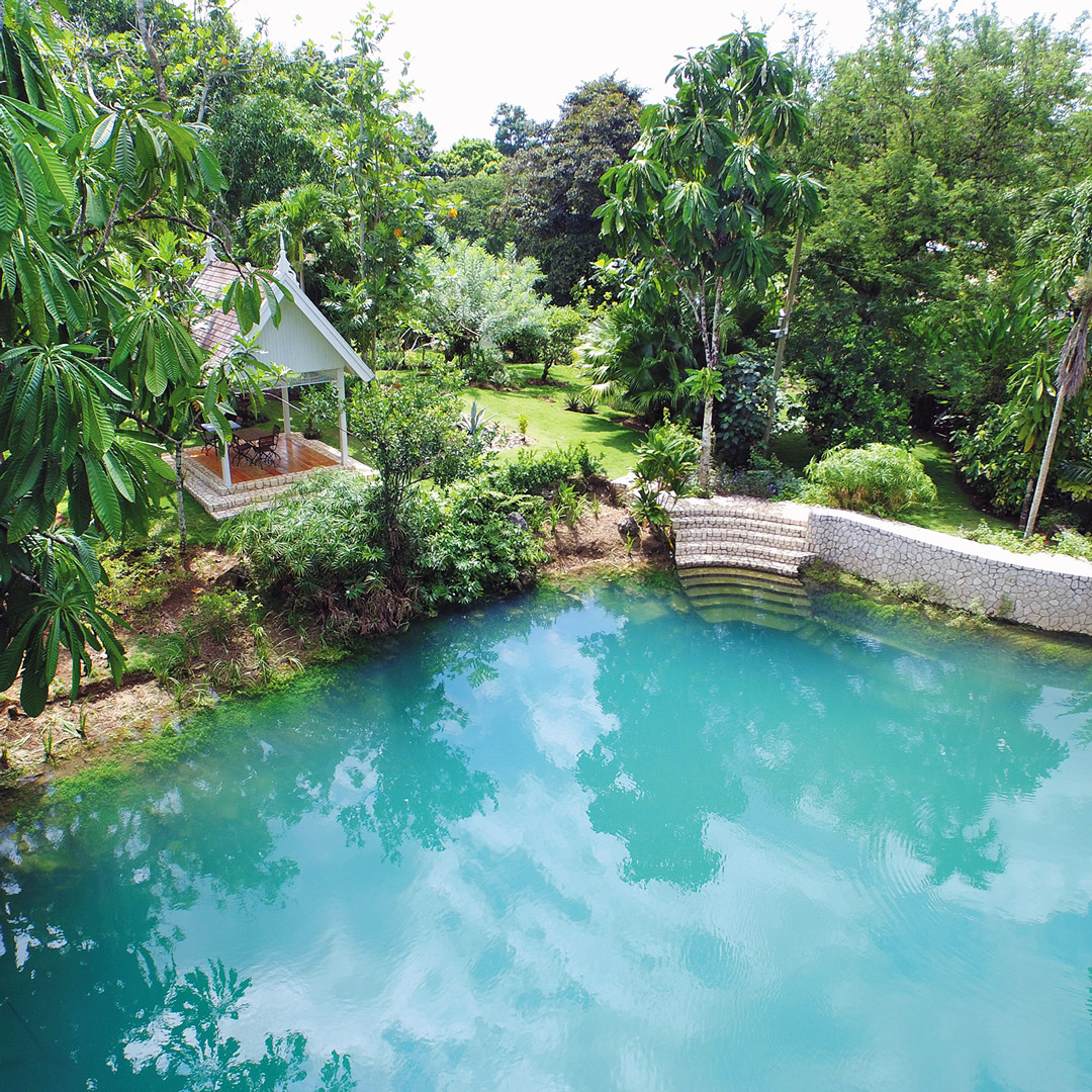 clear pool of water among lush green gardens in Jamaica