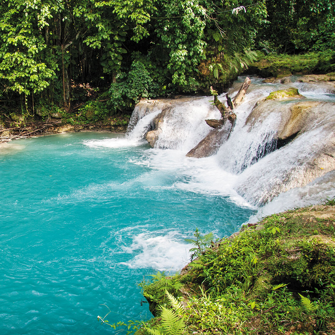 rapids of the White River in Jamaica