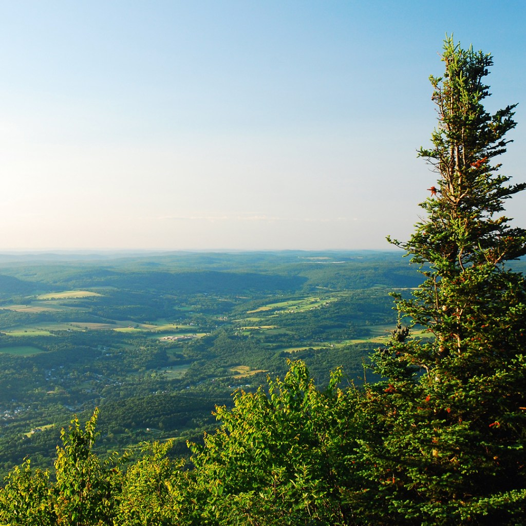view of green landscape from atop a mountain