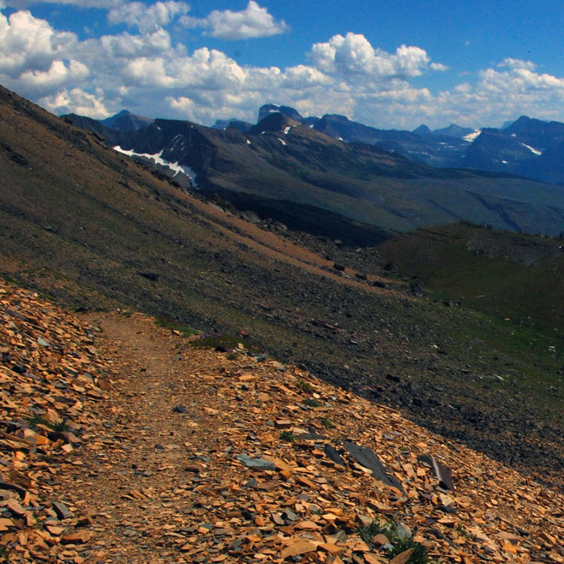 Highline Trail in Glacier's Fifty Mountain region.