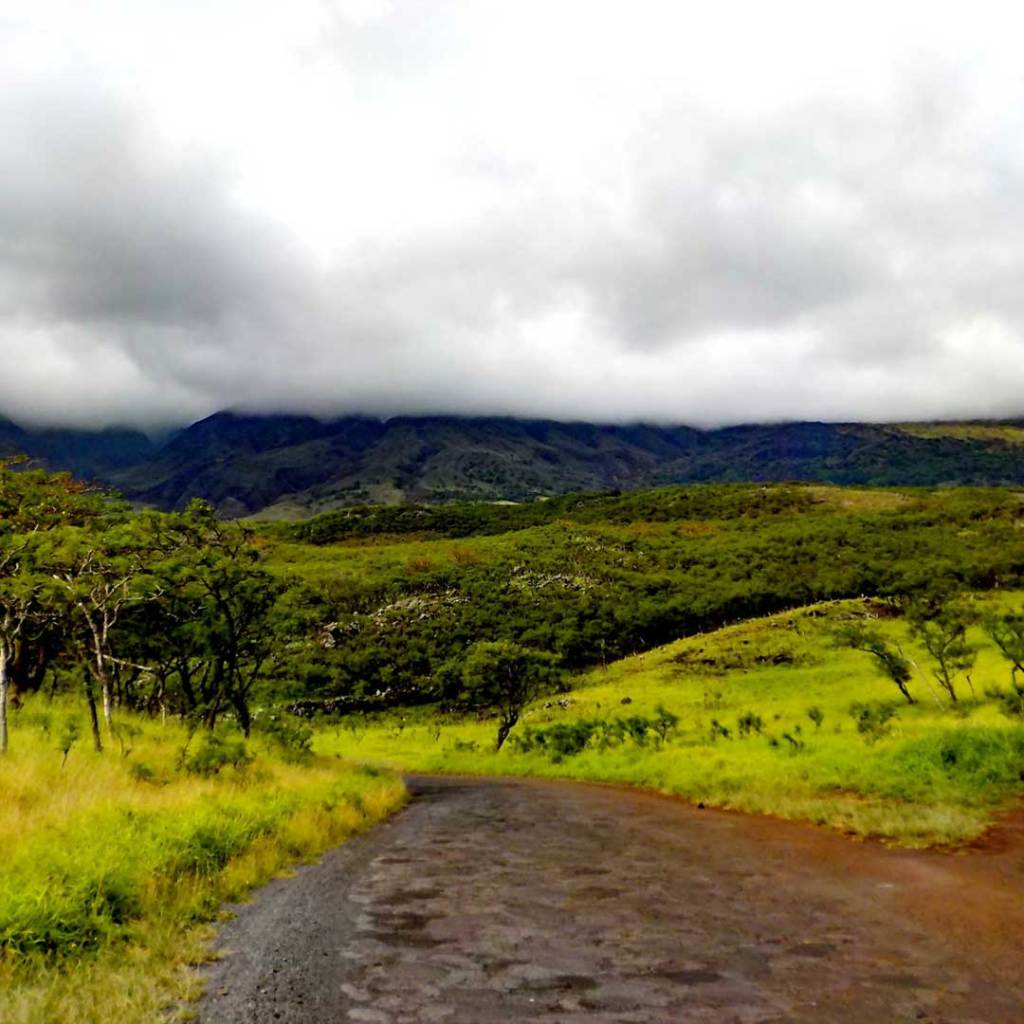 A dirt stretch on the Road to Hana. Photo © Emily Norman/123rf.