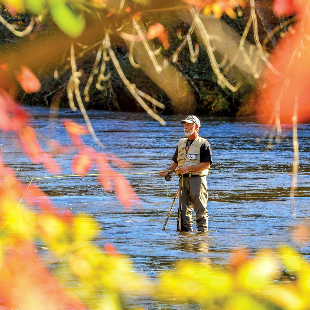 A fly-fisher in the Tuckasegee River with fall foliage around.