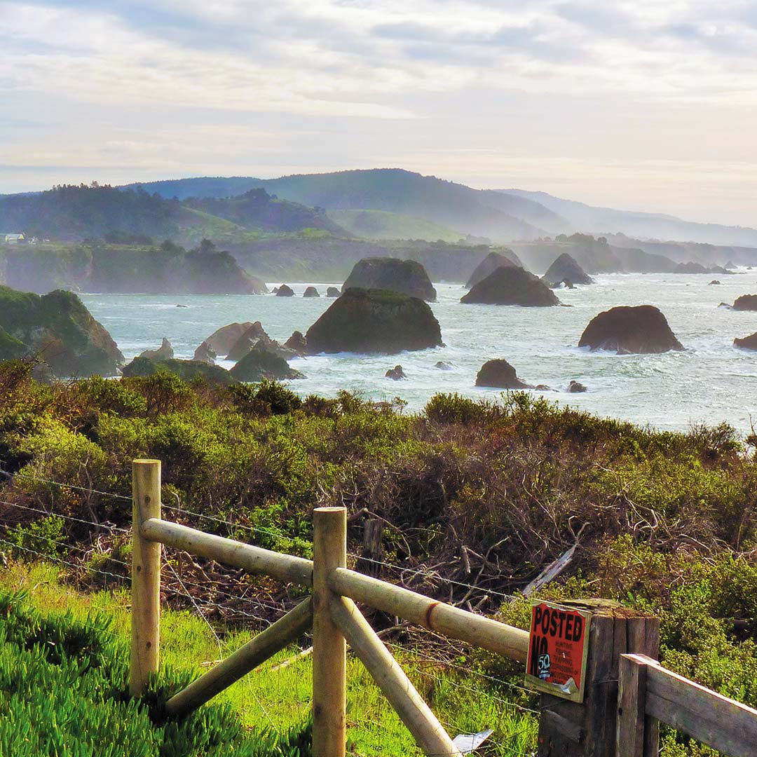 California's rocky Mendocino Coast. Photo © Elizabeth Linhart Veneman.