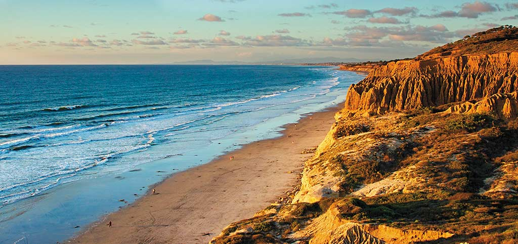Torrey Pines State Reserve. Photo © Chad McDermott/The Department of Creativity.