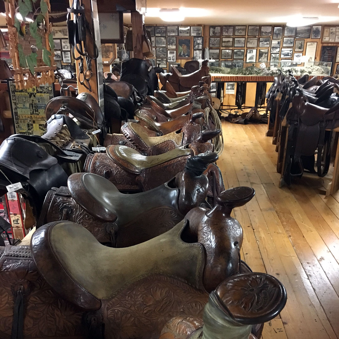 saddles lined up in a store