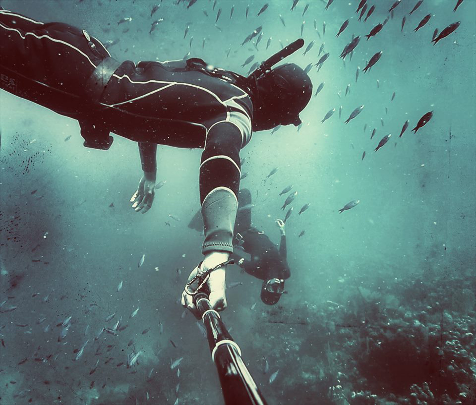 Underwater shot of Freedive Utila diver amongst a school of fish.