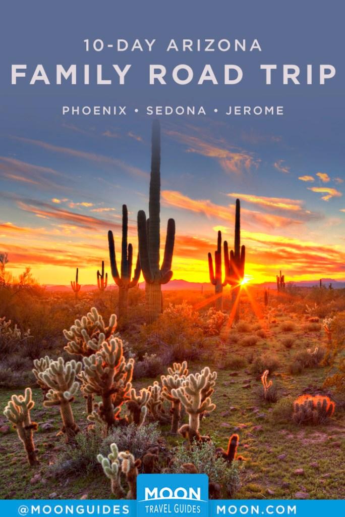 Sun setting in the Sonoran desert, over cactus landscape. Pinterest Graphic.