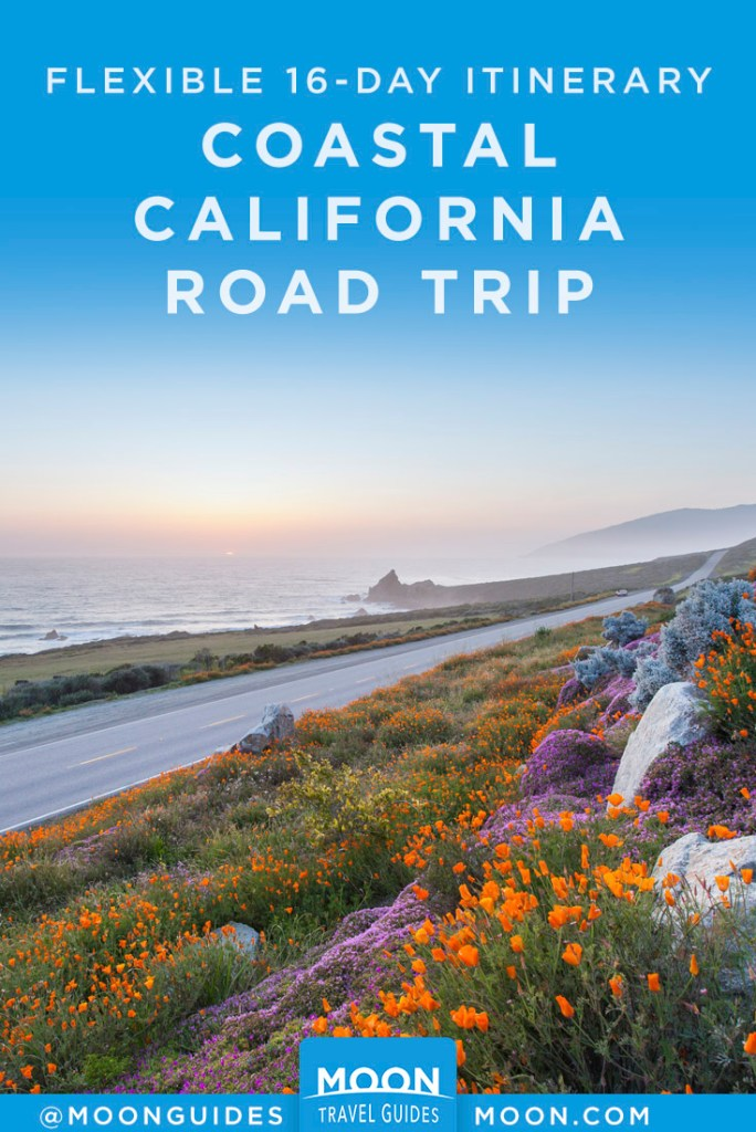 Big Sur road along coast, lined with wildflowers. Pinterest Graphic.