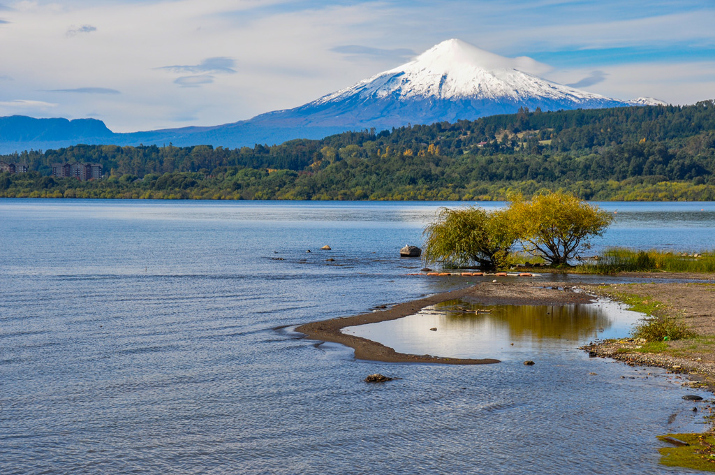 View of Volcán Villarrica with clear water and a golden tree on the side.