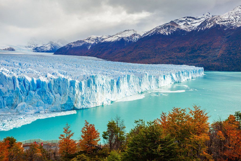 View of Glaciar Perito Moreno with fall trees