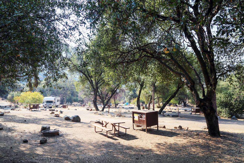 campground shaded with trees with a picnic table