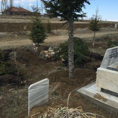 tepekoy mezarlik temizleme calismalari (19)