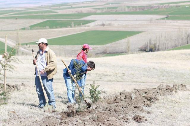 tepekoy Ağaç dikme etkinliğimiz (48)