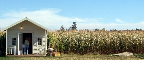 Entrance to the corn maze