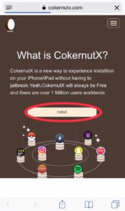 Cokernutx