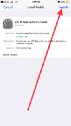 install iOS 12.4 beta profile