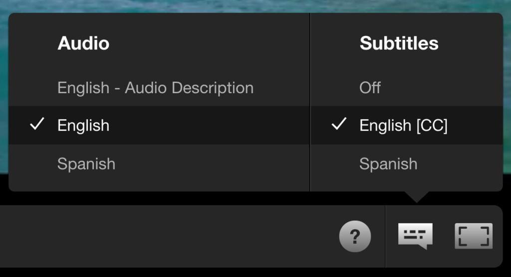 Audio Settings on Netflix