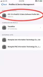 iOS 13 Beta Profile