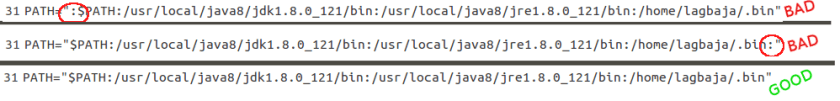 How to install Oracle Java on Ubuntu- Do not leave a dangling, orphaned colon at the beginning or end of your PATH! It is a security risk! Here are two bad examples and one good example of how to modify your PATH in order to install Oracle Java.