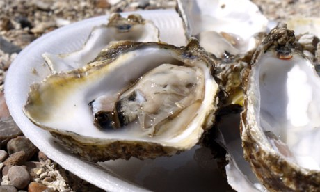 """""""A perfectly formed sophisticated animal"""": oysters plucked from their watery home. Image: Malcolm Murdoch via Flickr"""