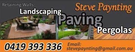 Steve_Paynting