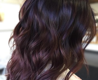 Dark Brown Hair with Subtle Purple Highlights