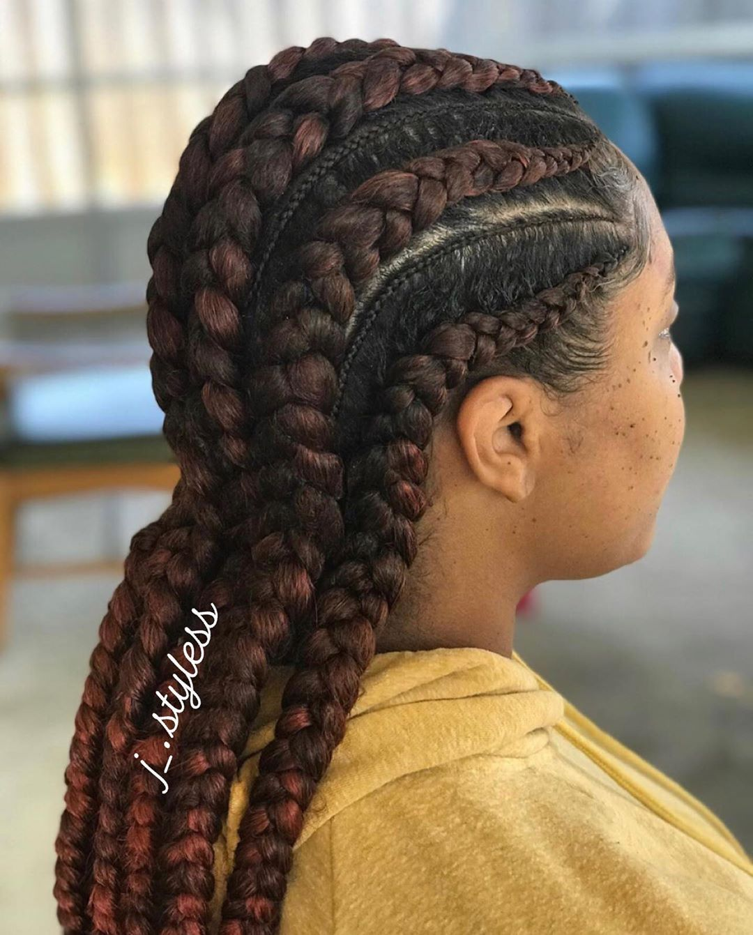Fall Braided Protective Hairstyle