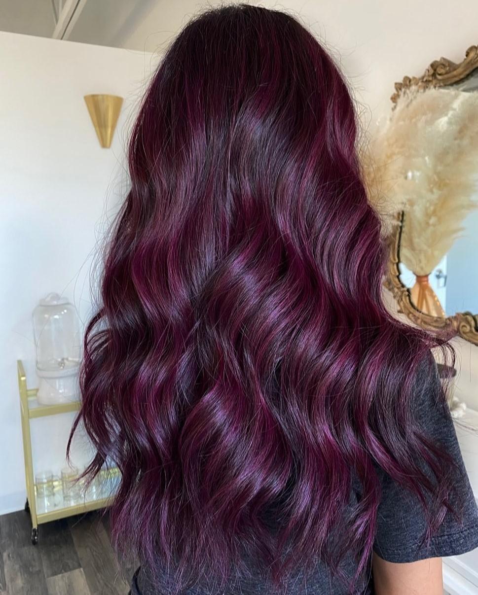 Shiny Dark Plum Hair Color Idea