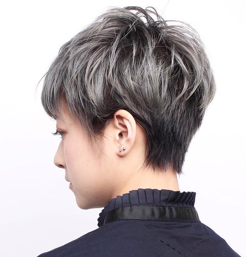 Short Dark Undercut with Gray Highlights