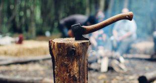 Çok Meşgul Oduncu