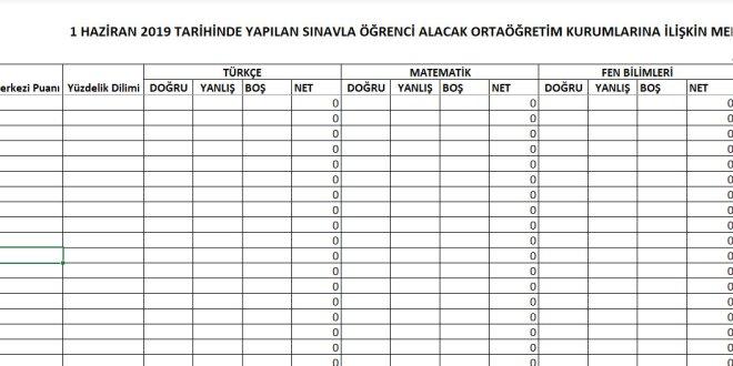 Lgs Sınav Sonuçlarını Tek Sayfada Listeleme Programı 2020 V2