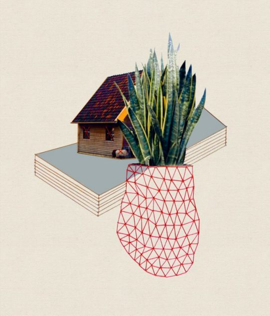 Big plant, 2013, embroidery on paper