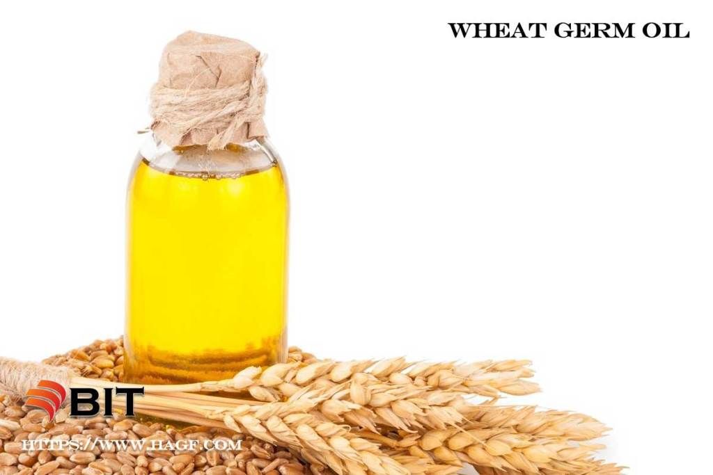 Supercritical CO2 Extraction of Wheat Germ Oil