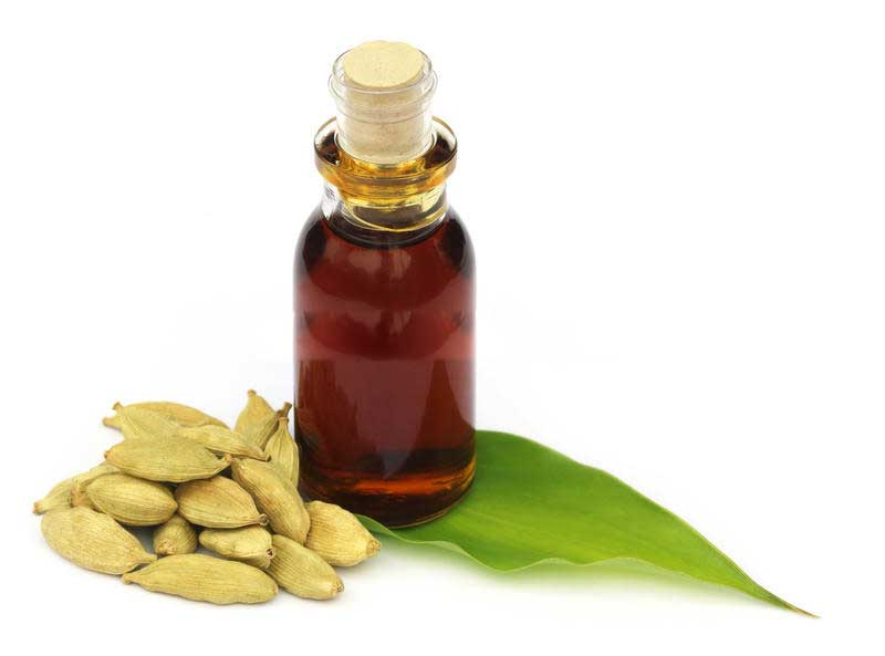 Cardamom oil extracted by supercritical CO2