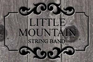 LittleMountainStringBand