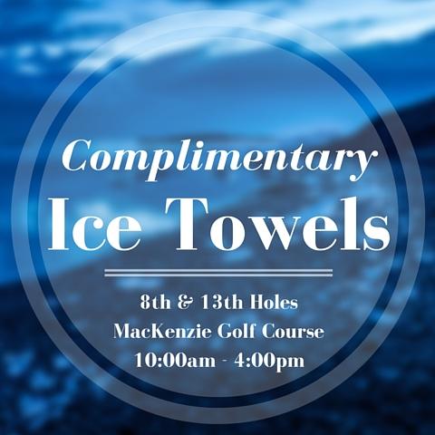 HO - Ice Towels