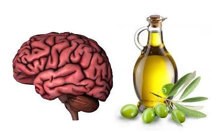 Resultado de imagen de aceite de oliva y cerebro