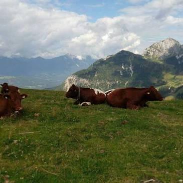 חבל קרניתיה (אוסטריה) וסלובניה