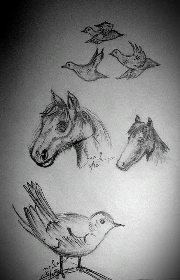 animals_drawings