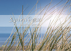 spinifex.jpg