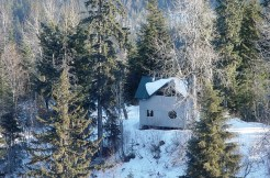 Mountain Top Cabin Overlooking Moose Valley